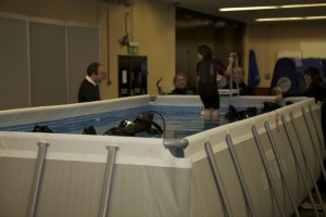 Try SCUBA at Whalefest 2012