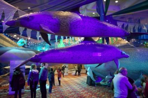 Hall of Whales at Whalefest 2012