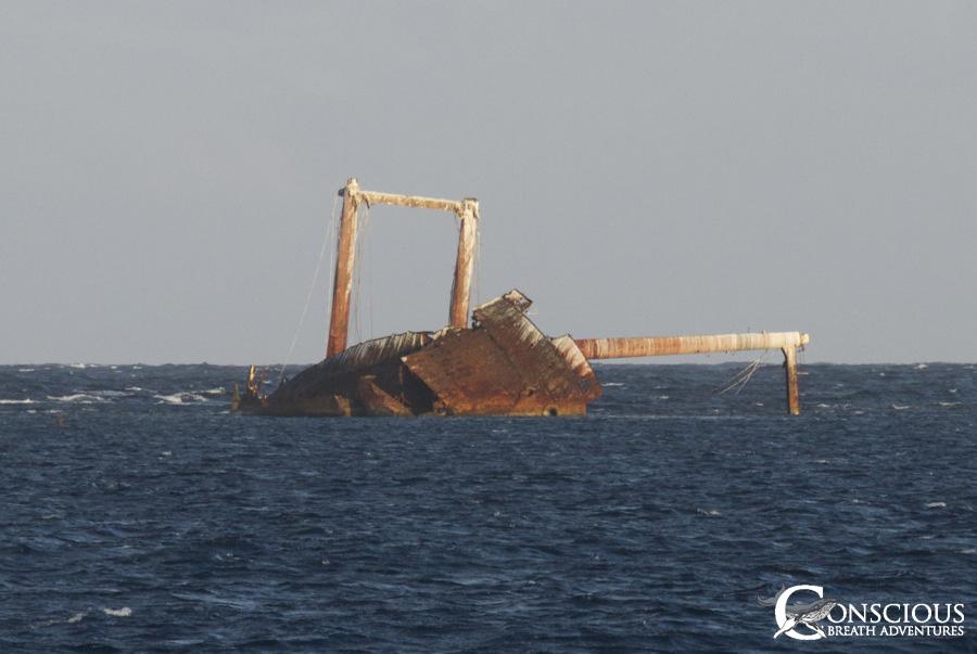 The Wreck of the Polyxeni 2013The Wreck of the Polyxeni 2013