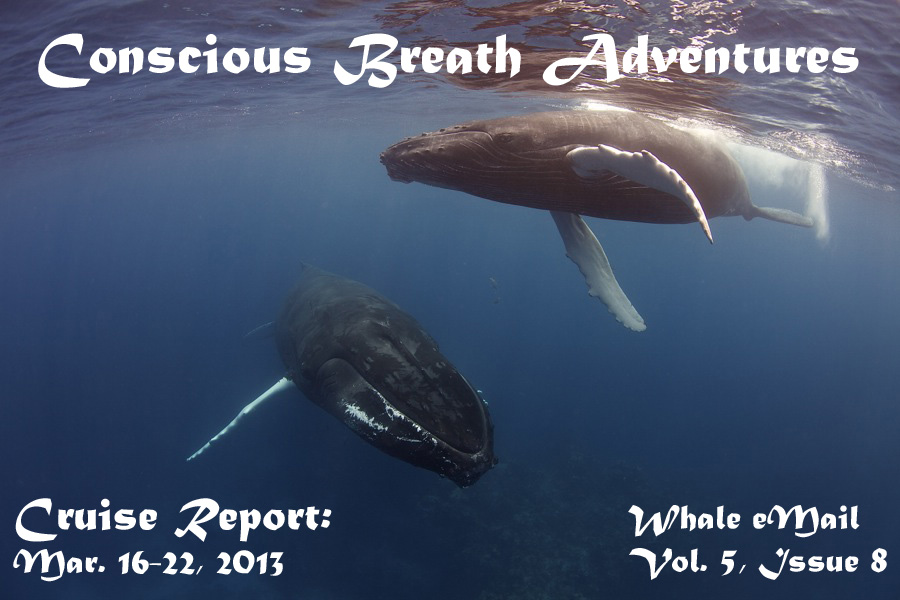 Conscious Breath Adventures' Cruise Report: Week 8, March 16-22, 2013