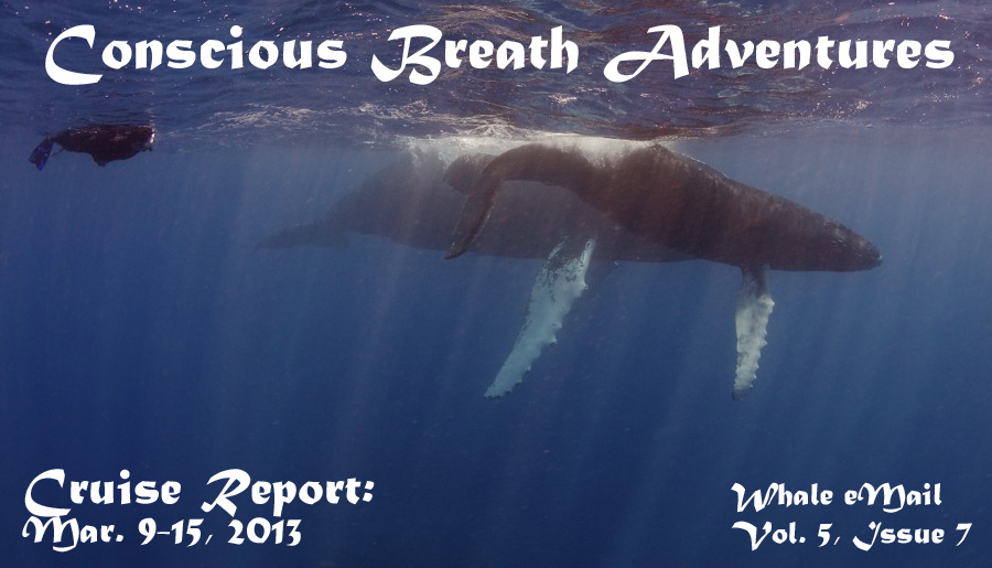 Conscious Breath Adventures' Cruise Report: Week 9, March 23-29, 2013