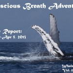 Conscious Breath Adventures' Cruise Report: Week 10, March 30-April 5, 2013