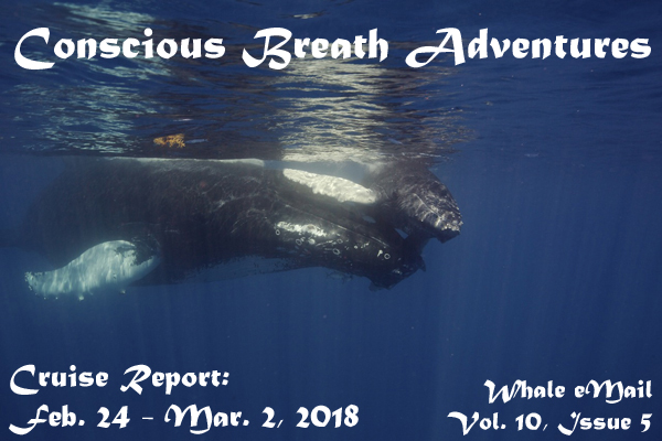 Cruise Report, Week 5: Feb. 24 – Mar. 2, 2018 – Conscious Breath Adventures