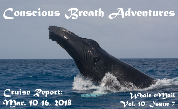 Conscious breath Adventures' Cruise Report, Week 7: Mar. 10-16, 2018